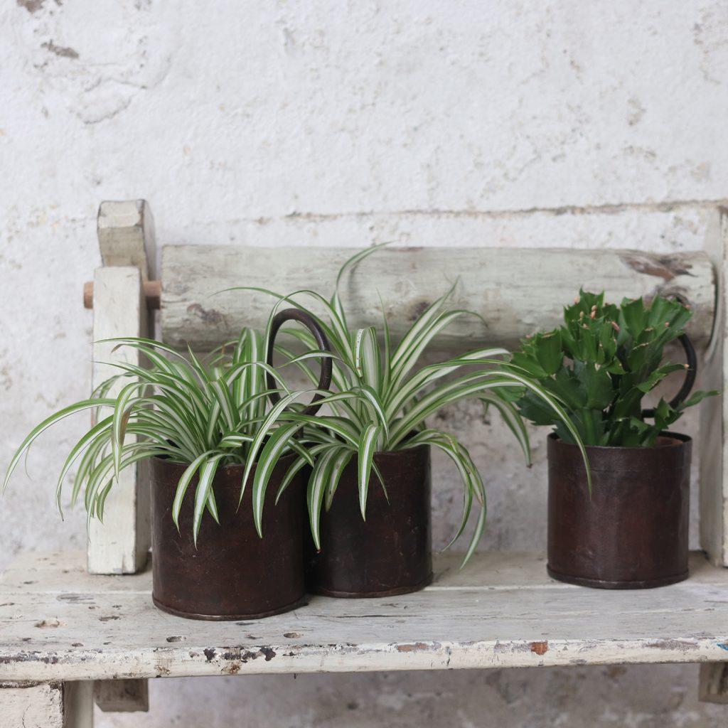 Spring Home Decor Plant Pot