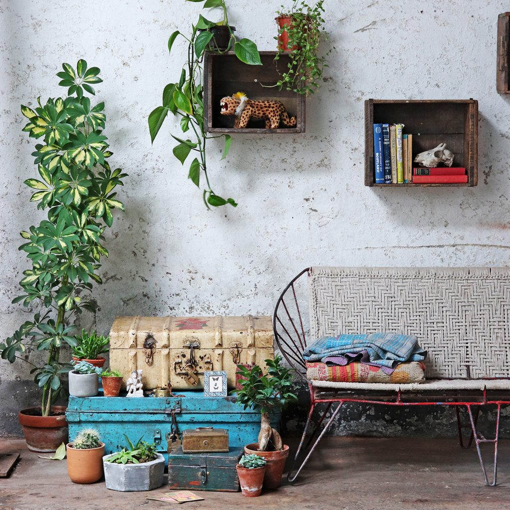 Wooden storage repurposed as wall shelving