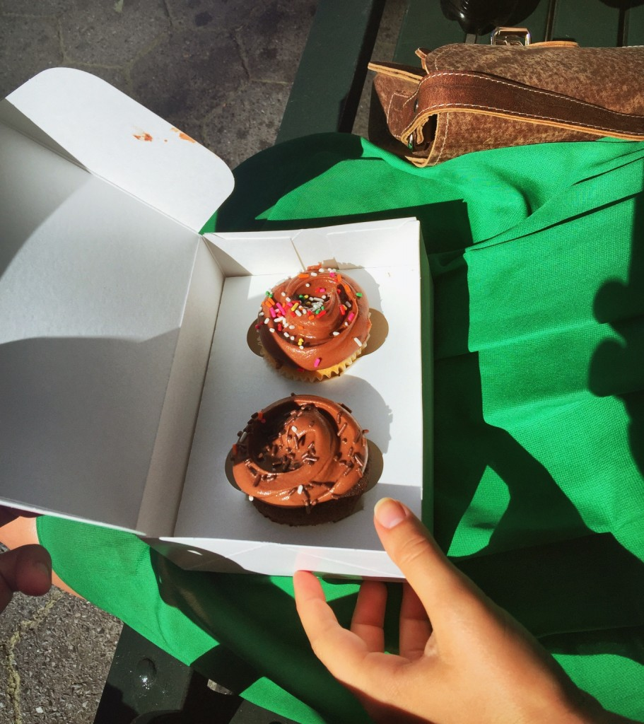 Magnolia Bakery Cupcakes in Central Park