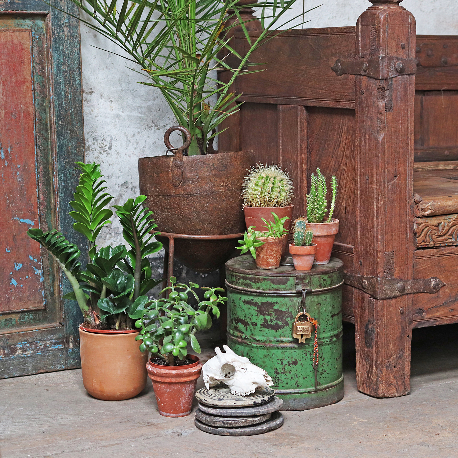 These vintage tins make a great feature for Indian summer interiors