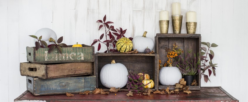 Decorate with Vintage Crates | by Scaramanga