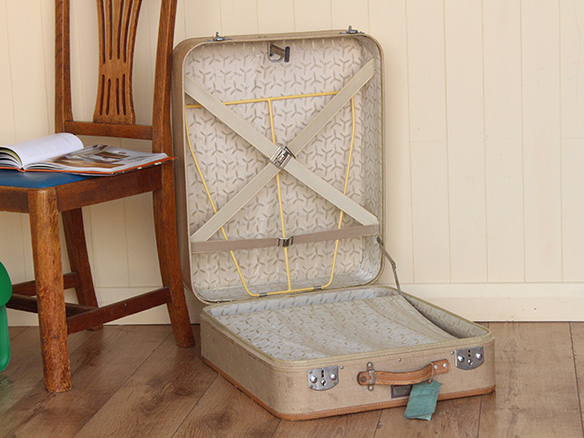 Fitted Ladies Wardrobe Suitcase, £100