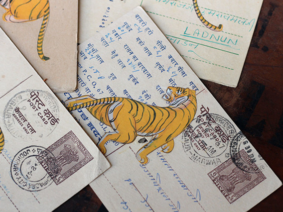 View our  Hand-painted Vintage Indian Postcard - Terrible Tigers from the  Vintage Postcards & Posters collection