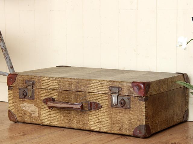 Vintage Faux Snake-Skin Suitcase