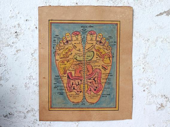 Hand-Painted Wall Art - Reflexology Feet