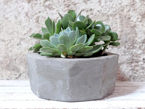 Hexagonal Cement Pot