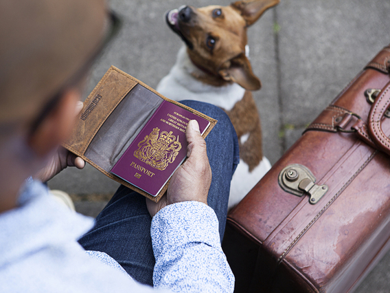 View our  Leather Passport Holder from the  Gifts For Men collection