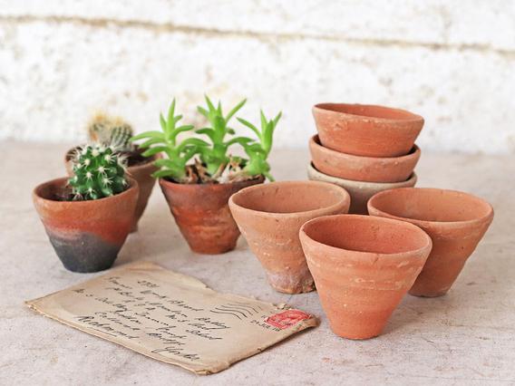 Micro Terracotta Plant Pots - Set Of 10