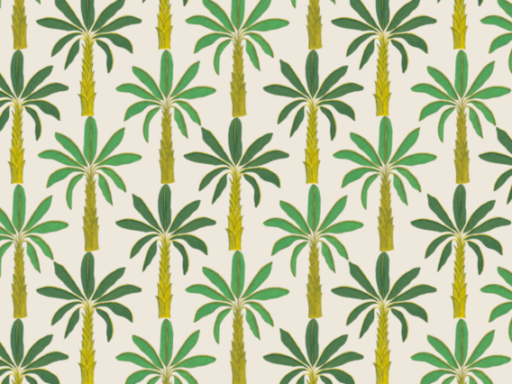 Tropical Wallpaper: Porcelain White-T1902PWS