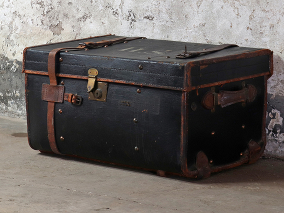 View our  Travel Trunk from the  Non Metal collection