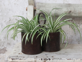 Metal Plant Pot - Double Thumbnail